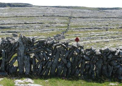 1280px-Burren_2008-07-03_12-49