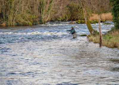 Angling in Ireland